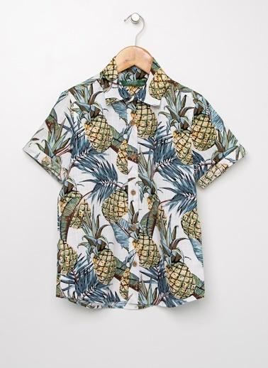 Limon Company Gömlek Renkli